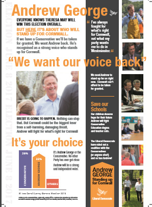 Andrew George 2017 Campaign - Leaflet